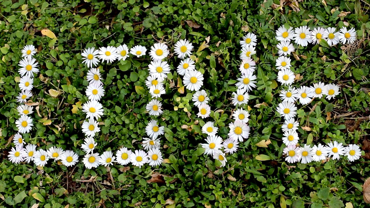 Flower Spelling LOVE