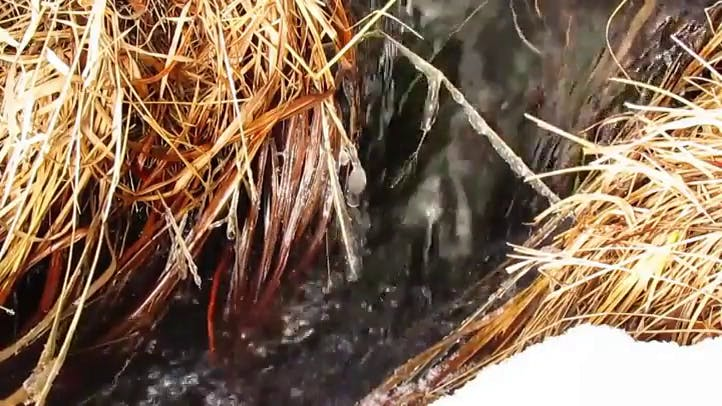 Closeup of a Creek in Springtime w Melting Snow Ice Free Stock Footage