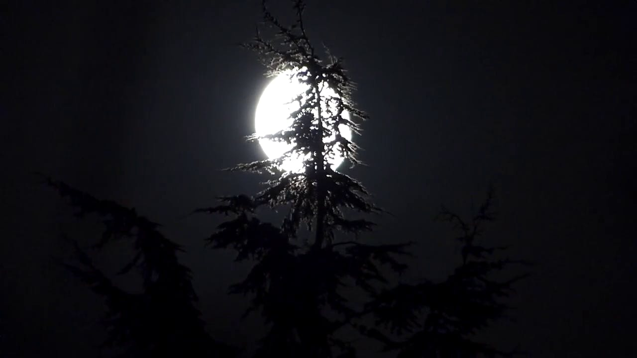 Scary moon stock footage