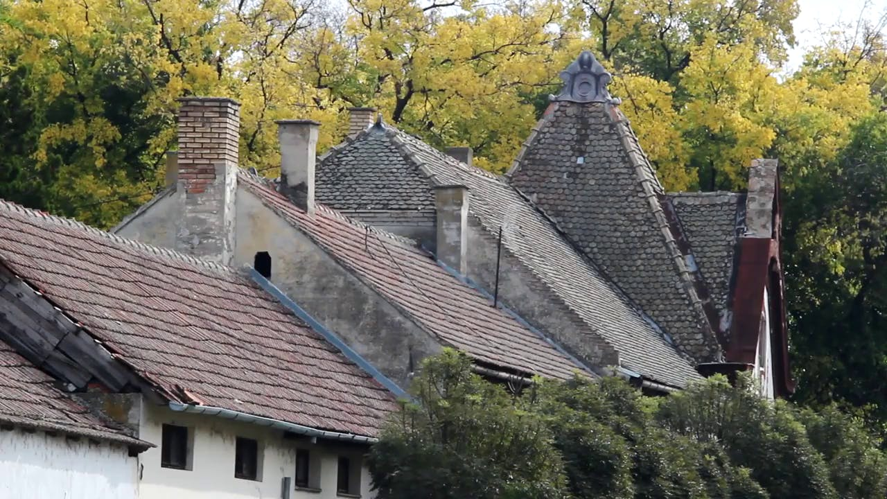 Old house roof with autumn leaves in background stock footage