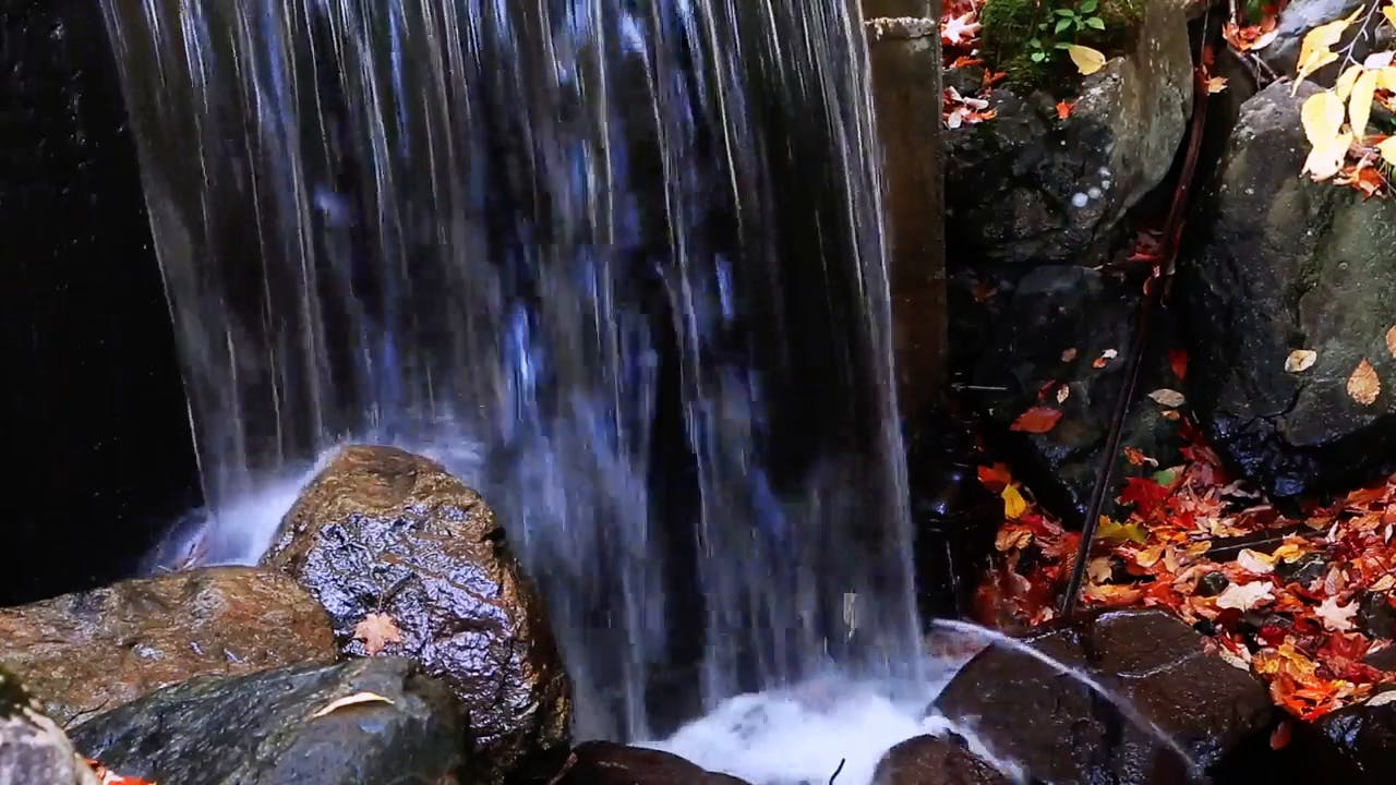 Waterfall Stream Stock Footage